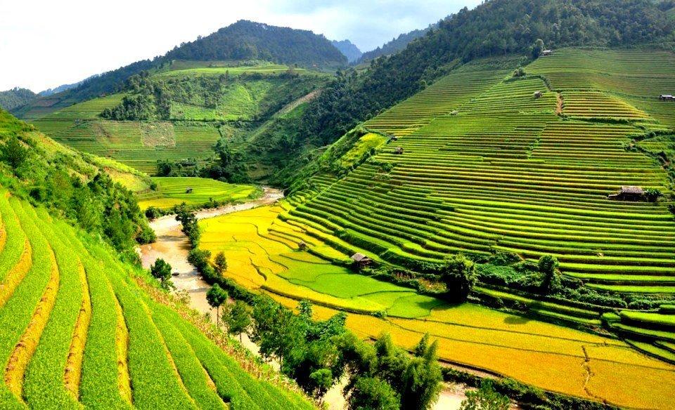 Guide francophone au vietnam voyage pas cher agence de for Agence format paysage