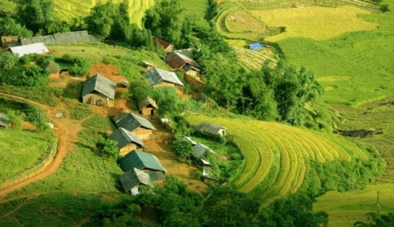 Rizieres en terasse Sapa -guide-francophone-hanoi