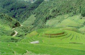 La province Cao Bang
