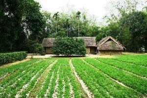 le village natal de Ho Chi Minh