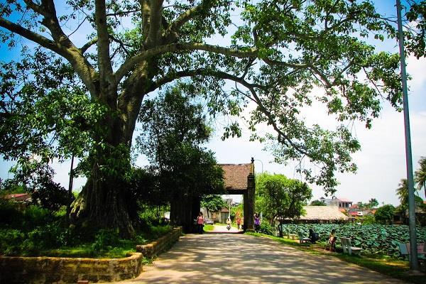 Visite de l'ancien village de Duong Lam à Hanoi