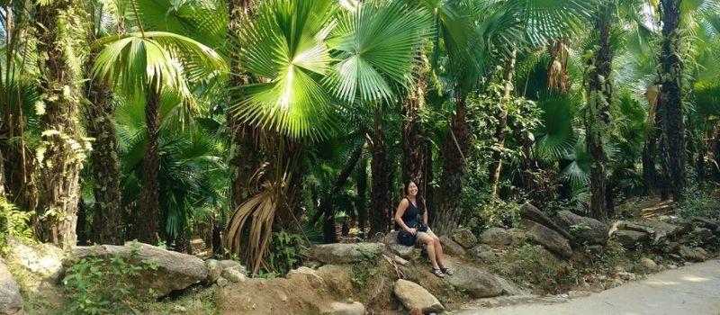 Voyage personnalisé et exceptionnel - Guide francophone Vietnam
