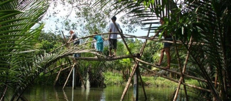Pont Singe au Sud Vietnam