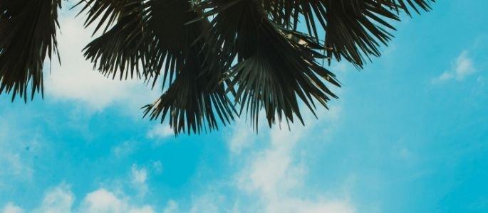 Climat agréable du Vietnam - Circuit au Vietnam pour les retraités